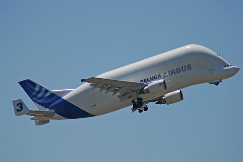 http://priyahita.files.wordpress.com/2007/11/airbus-beluga.jpg